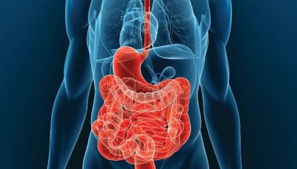 Польза и вред от голодания при гипертонии, суть и виды диеты, а так же основные правила во время лечения